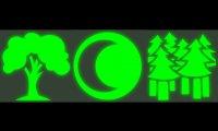 CBBG - Sommer - Nacht - Wald