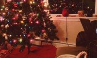 Lullaby Christmas
