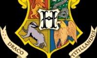 Quidditch Gryffindor vs. Hufflepuff