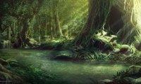 D&D Fantasy Forest