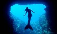 Nearing The Siren