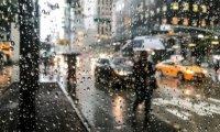 Rainy New York City Café