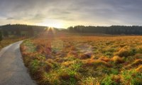 Sunrise Meadow Ride on Horseback