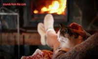 Cat purring by a fire