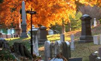 Through the cemetery in October