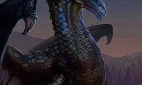 Eragon studying whilst Murtagh Sleeps