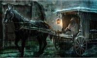 Horse, rain, forest