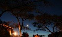 African Safari at Night