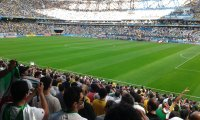 Druming fans at a world cup soccer game