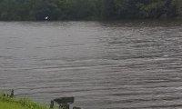 calming lakeside retreat