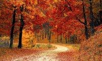 Crisp Fall Day