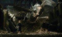 Beware of Dragons