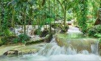 Calming Fantasy Garden