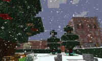 Winter in Sunwood