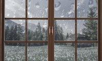 Spring Rain on Window