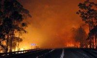 A Bushfire Rages On