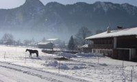 Winter cabin in a small European village