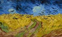 Subtle Wheat Field