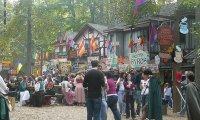 A Festival for the senses