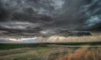 Calm Meadow and Light Rain