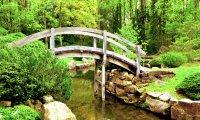 Zen Garden with Breeze and Birds