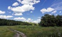 Road ro Phandalin - Walking