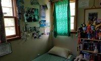 Bedroom Ambience In Springtime