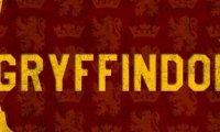 Gryffindor Common Room (DMM)