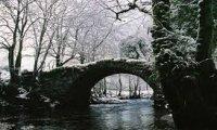 Celtic riverbend