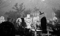 Creepy Graveyard at Night