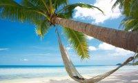 Relax in a hammock - waves, gulls, faint tropical beats
