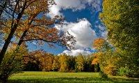 Fall Ambiance