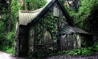 Witch's cabin in the woods