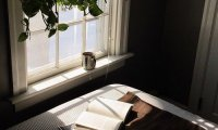Quiet Writing in the Morning