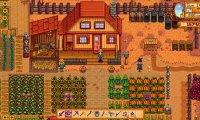 Time for pumpkins, eggplants and cranberries!