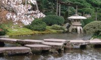 Japanese Garden in Space