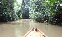 Paddling down the Amazon