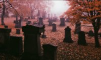 A Night in a graveyard