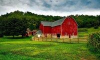 English Farm