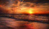 Rough Ocean Waves & Distant Seagulls