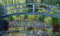 Garden with birds, stream and breeze