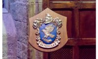 Typical night in the Ravenclaw common room...now where did I put my quill??