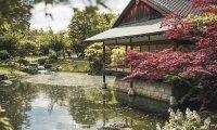 Simple Japanese Garden