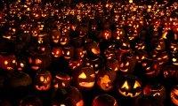 Aldyria's Annual Fall Festival