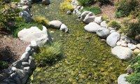 Friendship Garden - Balboa Park, San Diego