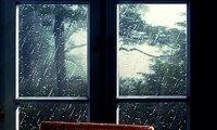The rain outside my window