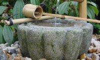 Meditation in a zen garden