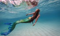 mermaids at sea