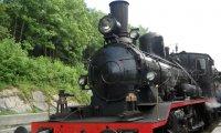Steam Train in the Rain