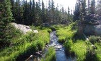 Mountain Stream Respite